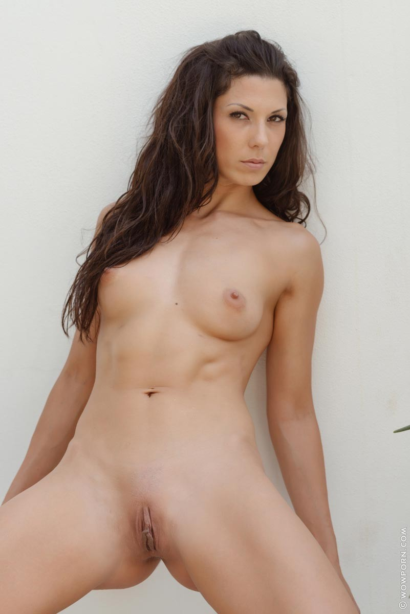 bigest penius in porn industy